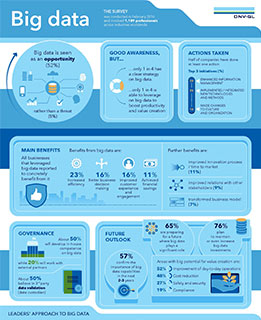 DNV GL - ViewPoint Spring 2016 survey -Big Data Infographic